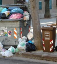 l_cassonetto-rifiuti