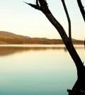 coghinas lago