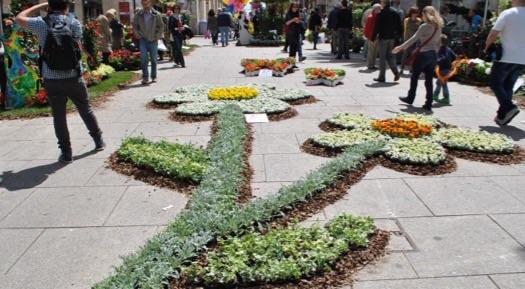 Sassari si trasforma in un giardino in fiore alghero eco for Trasforma un semplice terreno in un colorato giardino