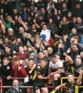 Rugby Amatori e pubblico