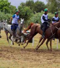 cavalli-endurance