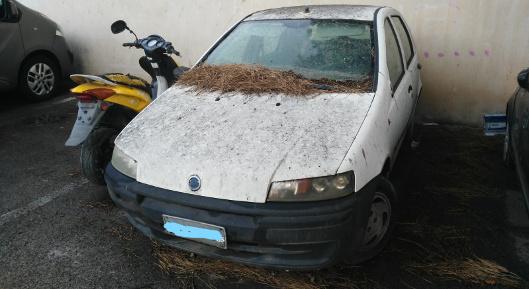 Lotta ai veicoli abbandonati, programma di rimozione al ...